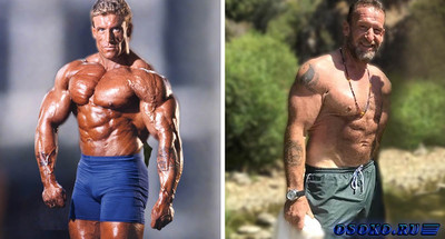 Dorian Yates Diet and Nutritional Tips to Gain Muscle